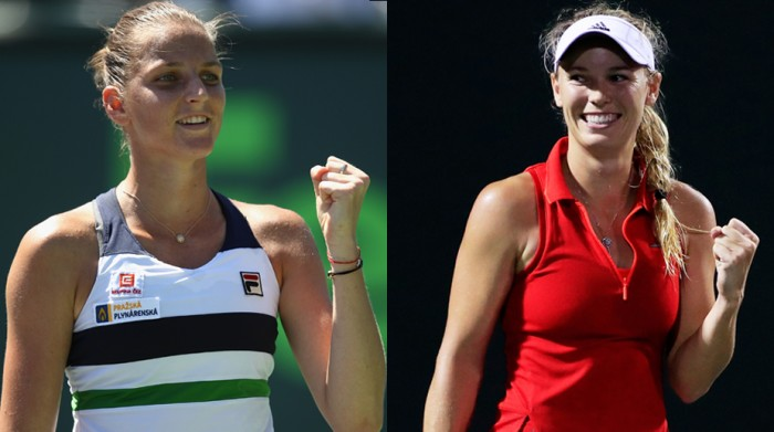 WTA Miami semi-final preview: Caroline Wozniacki vs Karolina Pliskova