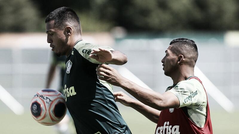 Inter de Limeira x Palmeiras: Verdão busca a melhor campanha do Campeonato Paulista