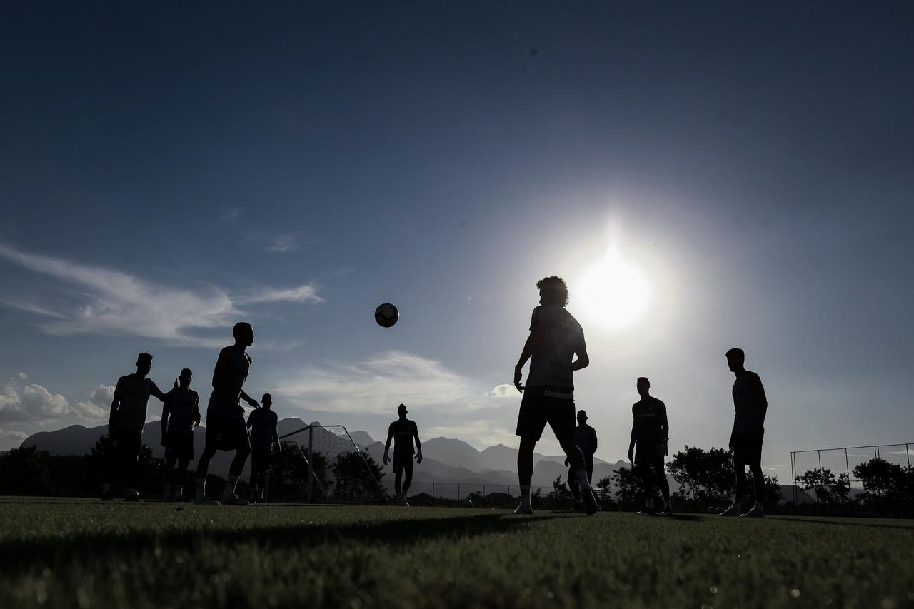 Em fases distintas, Botafogo e Grêmio se enfrentam no Brasileirão