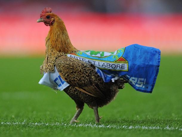 Wigan saborde Blackburn