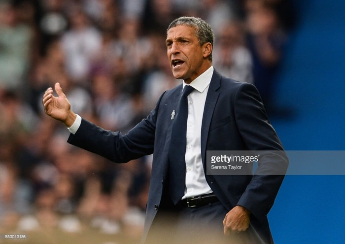 Chris Hughton praises Brighton's solidity following 1-0 win over Newcastle United
