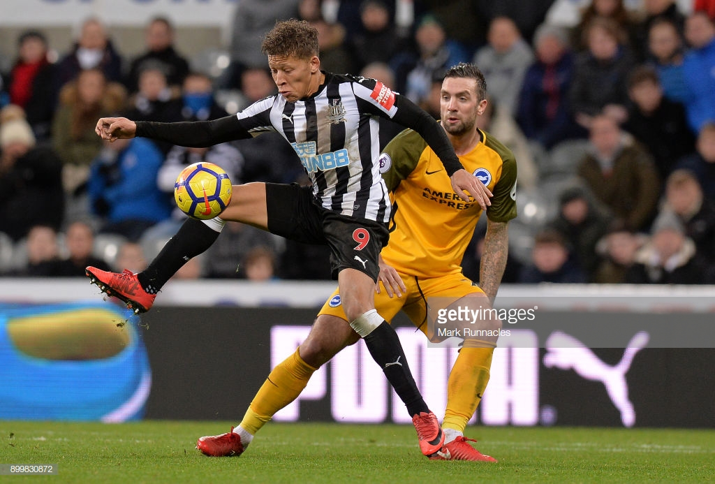Newcastle vs Brighton Preview: Chris Houghton aiming to haunt former club