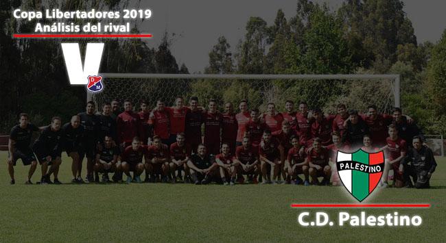 Independiente Medellín, análisis del rival: Club Deportivo Palestino