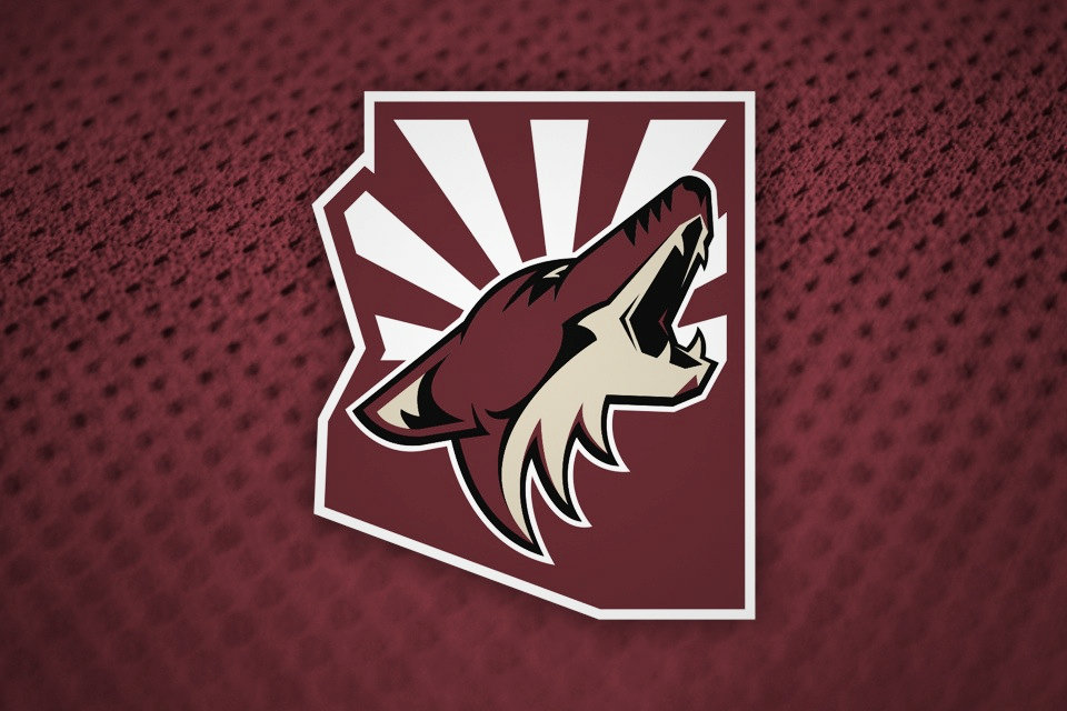 Arizona Coyotes begin a new season