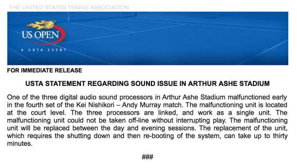 USTA statement following the incident on Ashe during the match. Photo: USTA