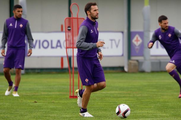 Fiorentina - violachannel.com