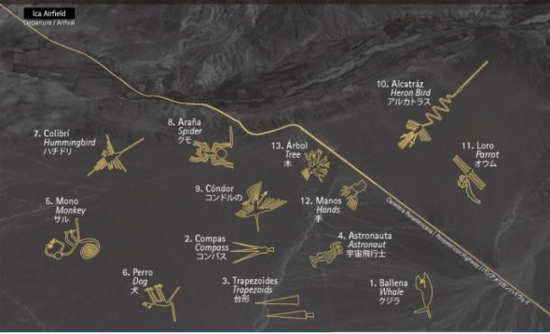 Mapa con las principales figuras de Nazca | AS