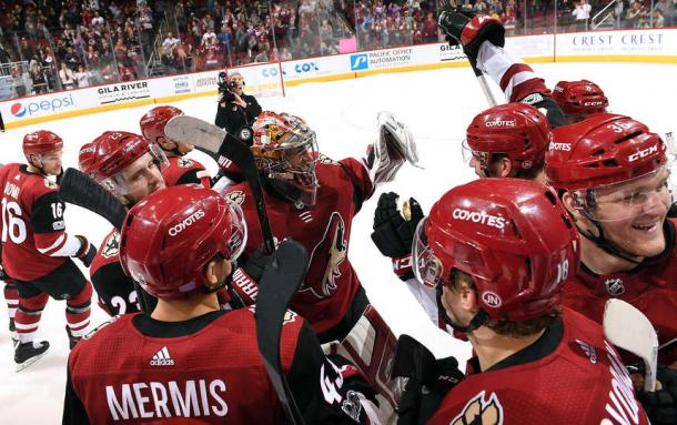 Arizona Coyotes have had little to celebrate this season, but are hoping for better fortune. (Photo: Getty Images)