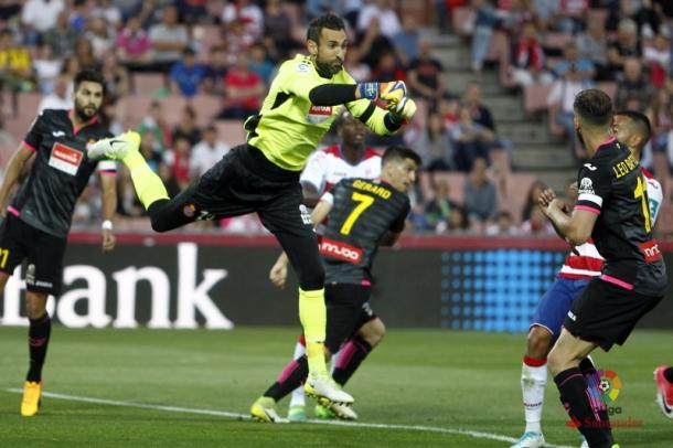Foto: RCD Espanyol.