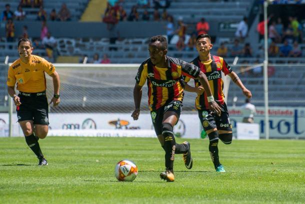 Foto: Leones Negros