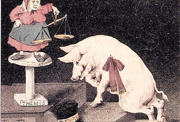 Cerdo a Juicio, Fuente: wikicomons