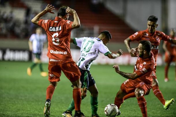 Coelho é mais eficiente que Tigre e sai vitorioso no Independência (Foto: Mourão Panda/América-MG)