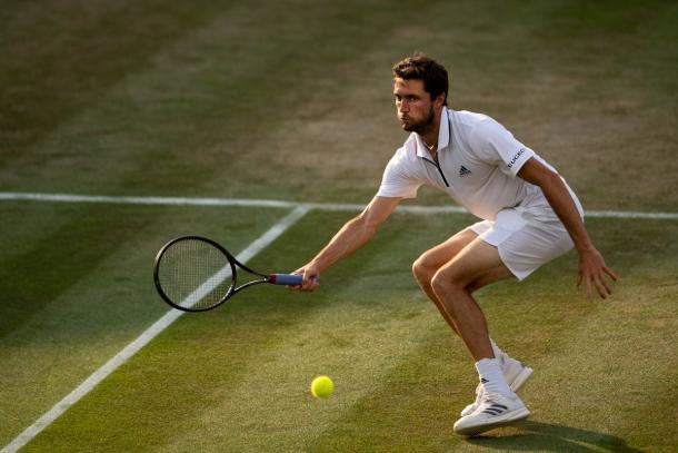 Simon - Fonte: @Wimbledon/ Twitter.