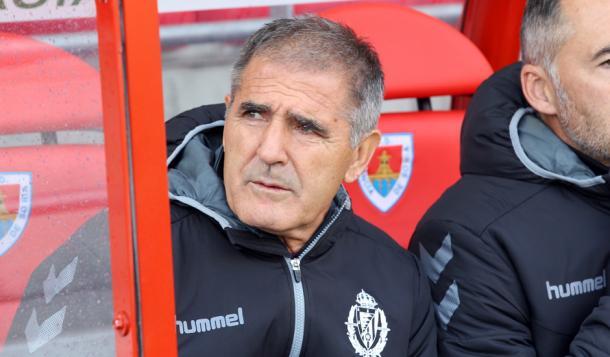 Paco Herrera, la semana pasada en el partido ante el Numancia (FOTO: Real Valladolid)