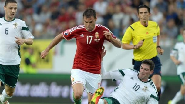 Nikolic will be key for Hungary in their campaign / UEFA