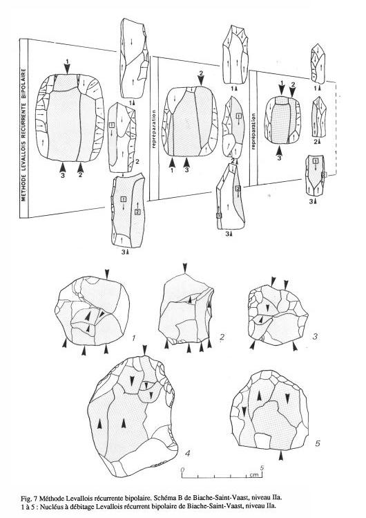 Esquema gráfico del método Levallois | Tecnología y terminología de la piedra tallada (1999)