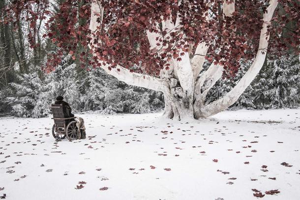 Bran Stark / Foto: IMDb.com