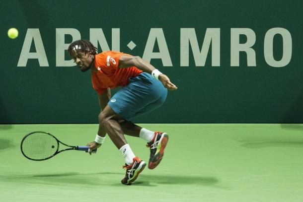 Gael Monfils. Photo: ABN AMRO World Tennis Tournament