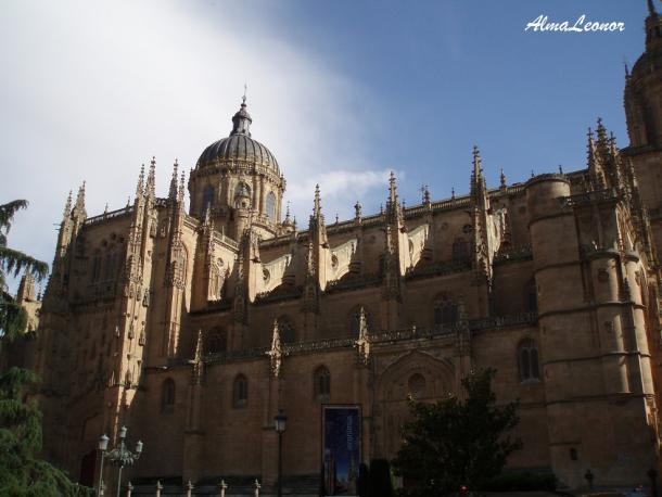 Catedral Nueva de Salamanca (Imagen: AlmaLeonor, de Vavel)
