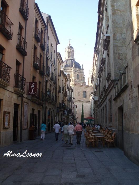 Calle de Salamanca (Imagen: AlmaLeonor, de Vavel)