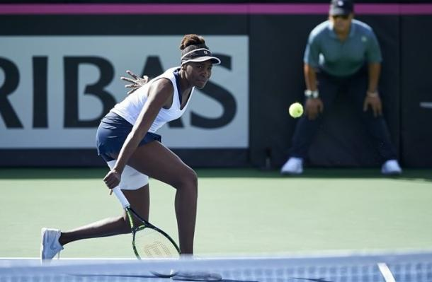 Venus Williams in action last weekend during the USA's victory. Photo: Fed Cup
