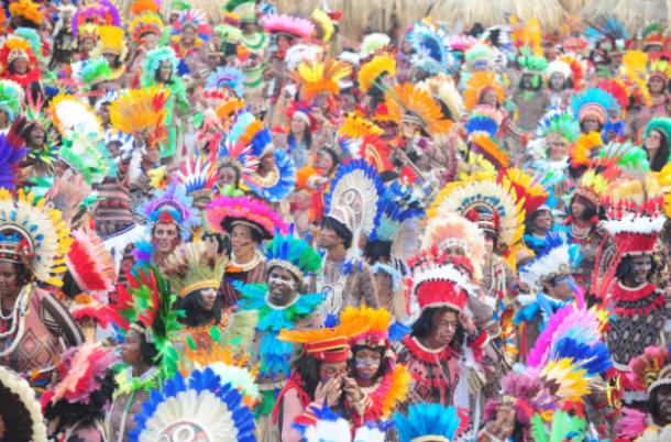 Desfile de 2017 quebrou a estrutura tradicional de divisão por alas. Foto: Blog Cristiano Alvarenga