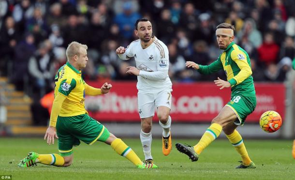 Leon Britton is battling a foot injury to keep Swansea in the Premier League (photo: PA)