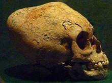 Cráneo maya modulado del Museo Antropológico Nacional de México | Pinterest