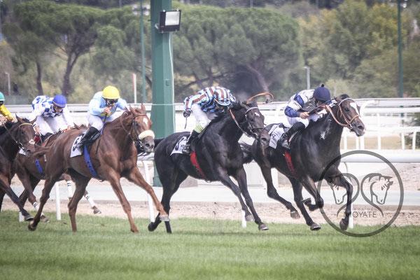 En una llegada en lucha, se hace necesario que cada caballo mantenga su línea de remate para evitar cualquier sanción. FUENTE: Amigos del Moyate