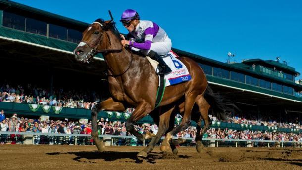 'Irap''s jockey has already won this race 3 times | Photo: HorseRacingNation