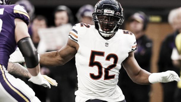 Foto: Bears