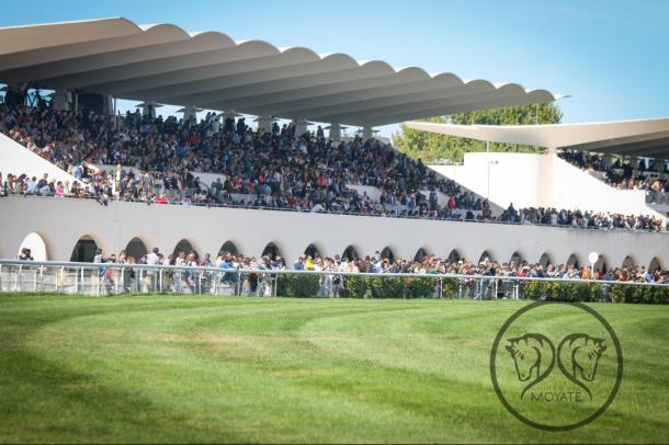 Hipódromo de la Zarzuela | Foto: Oscar Blazquez