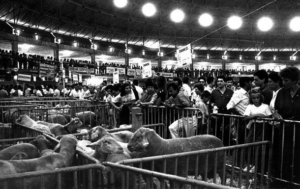 La feria de ganando que se convertiría en el Buesa Arena. | Foto: Buesa Arena