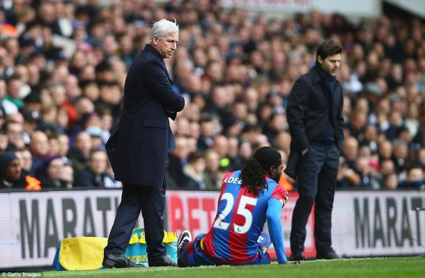 Pochettino, in the background, was beaten by Pardew (photo: getty)