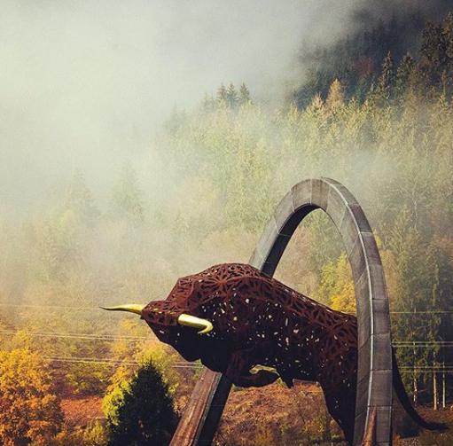 Toro de Spielberg. Foto: @redbullring