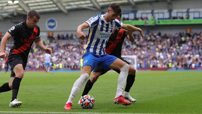 Jakub Moder in the Brighton vs Everton game | Photo: Brighton & Hove Albion