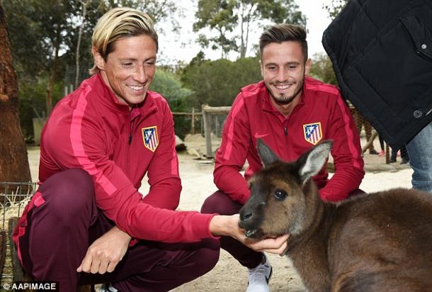 Torres pictured with teammate Saul at an Australian zoo (photo: APP)