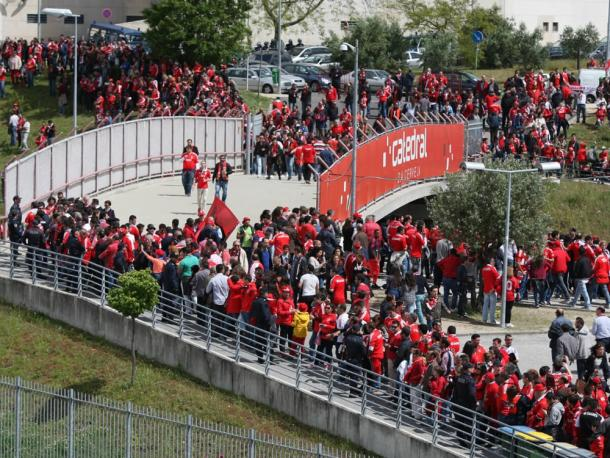 As condições impostas pelo Benfica geraram polémica entre os adeptos | Foto: Site Oficial SLBenfica