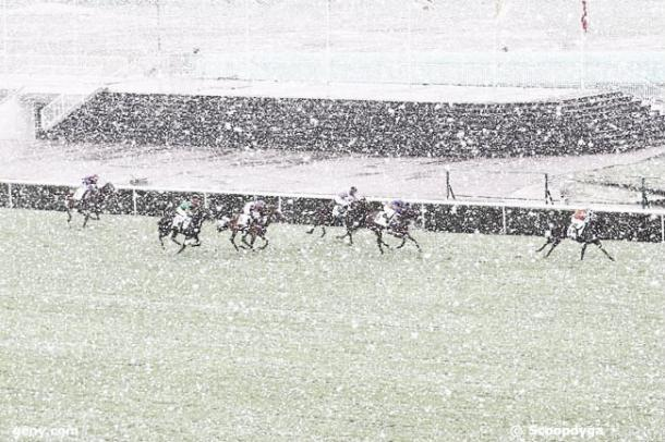 Vaerya en segunda posición bajo la tremenda nevada durante su carrera en el Hipódromo de Saint-Cloud. / Fuente: zeturf.