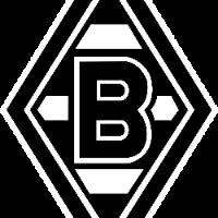 Borussia Verein für Leibesübungen 1900 e. V.