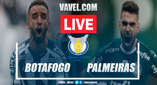 Gols e melhores momentos de Botafogo x Palmeiras no Brasileirão (2-1)