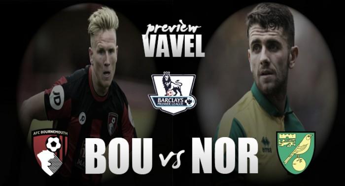 Bournemouth - Norwich City: enfrentamiento para alejarse del descenso