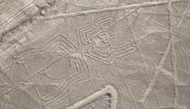 Líneas de Nazca con forma de araña | Lonely Planet