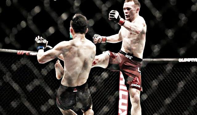 Foto: fight chamber