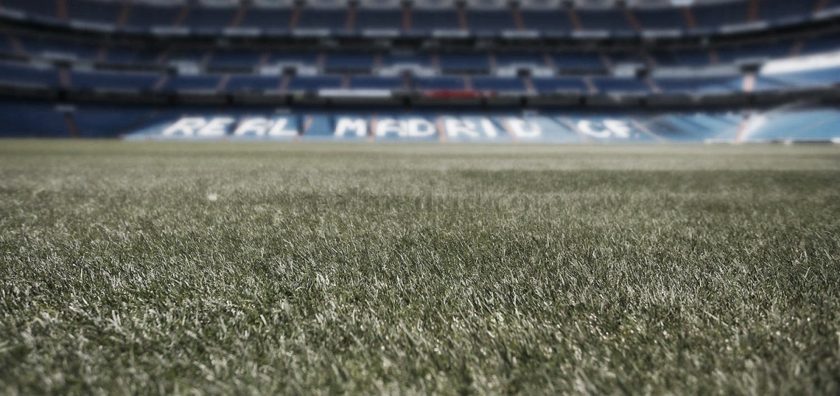 El Santiago Bernabéu ya luce nuevo césped - VAVEL.com fdae1f22a8797