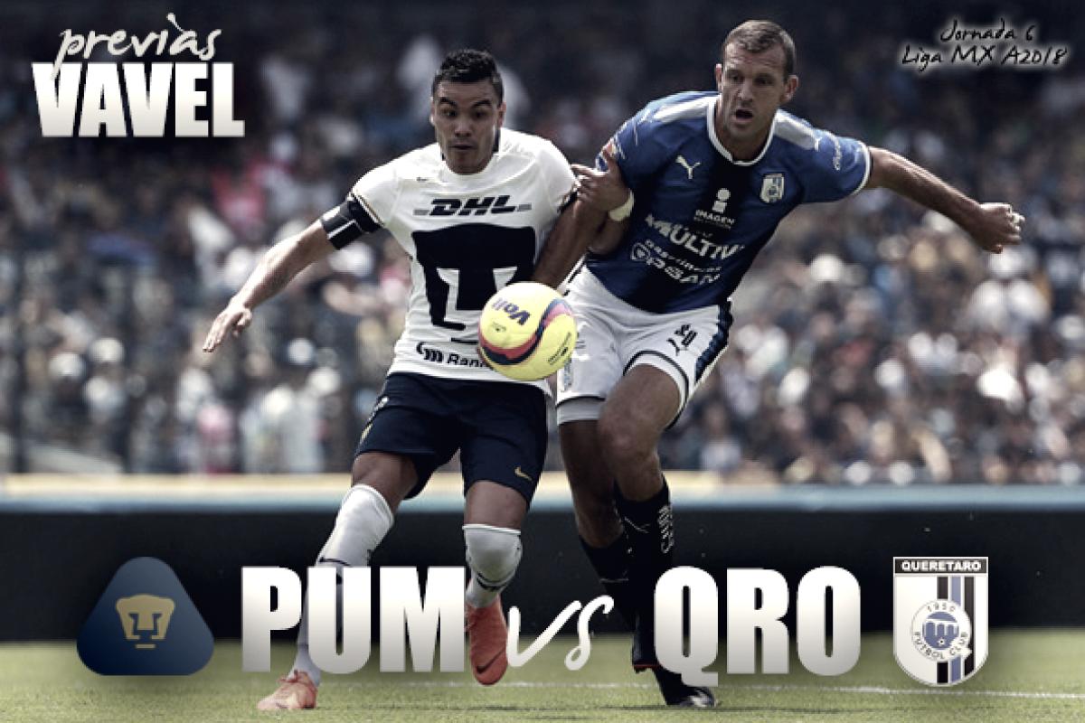 Previa Pumas vs Querétaro: realidad en aumento