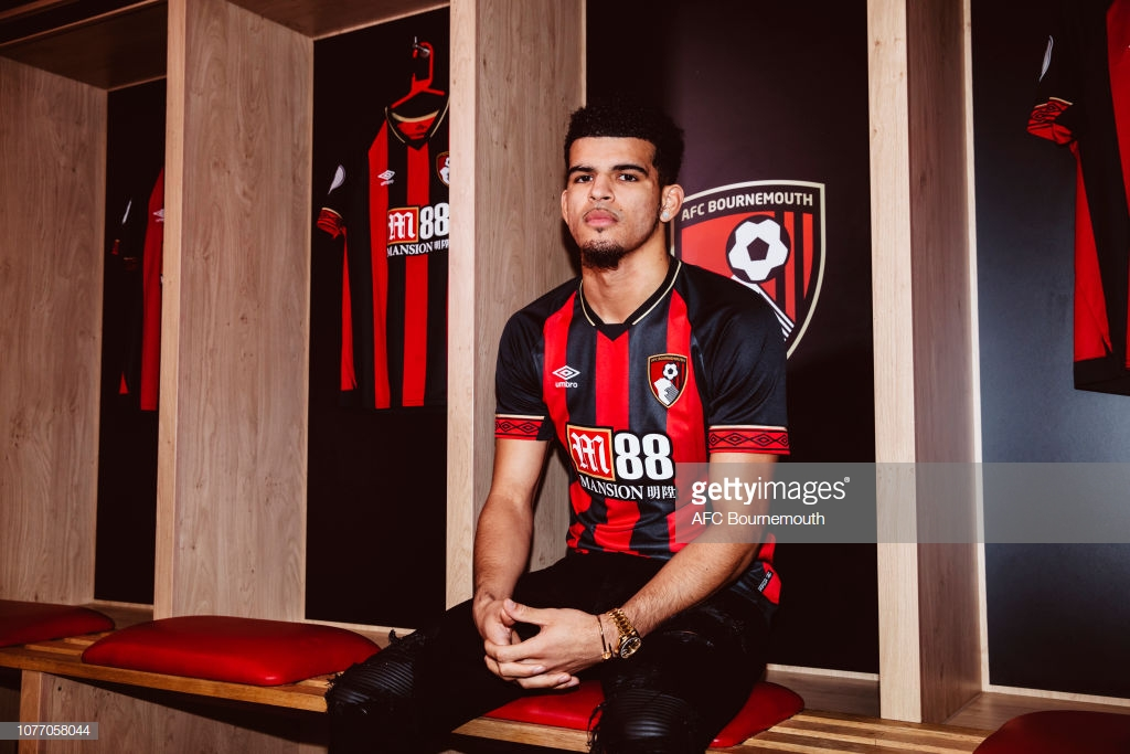 Dominic Solanke joins Bournemouth from Liverpool for £19 million