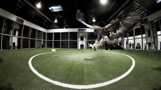 La jaula del Águila