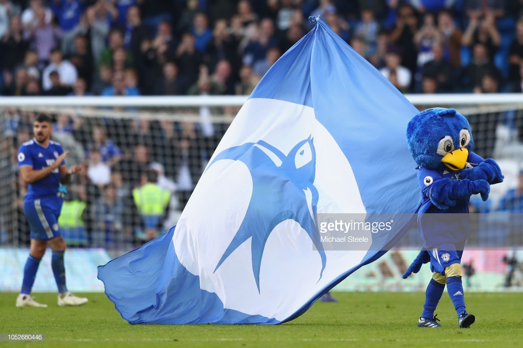 Cardiff City v Brighton & Hove Albion Preview: Can the Seagulls continue their good start?