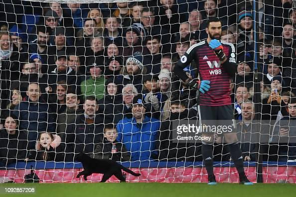 Everton vs Wolverhampton Wanderers: Classic Encounters